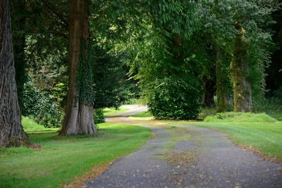 The landscaped gardens have roads suitable for wheelchairs, pushchairs or beginner cyclists