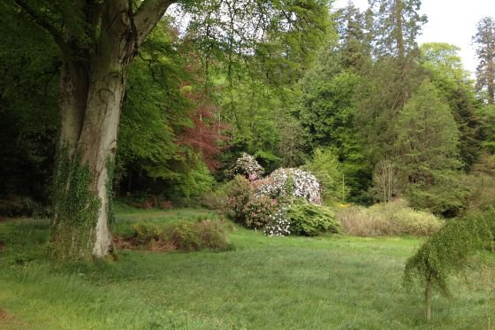Mature trees and shrubs make the gardens pleasant to explore