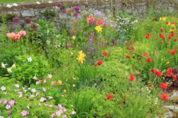 walled garden in june