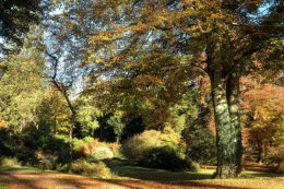 In autumn the gardens are a mass of colour.