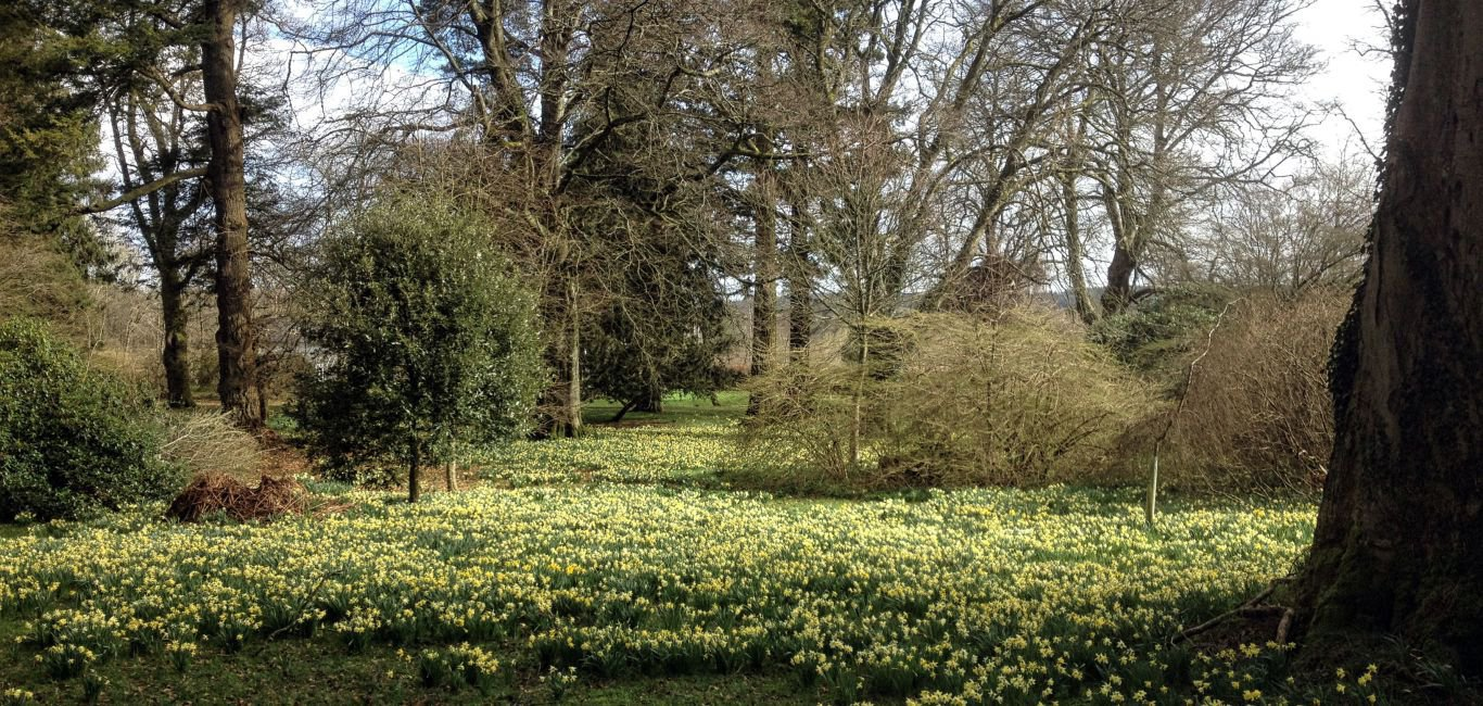 Special last minute offers at Kirkennan in Spring