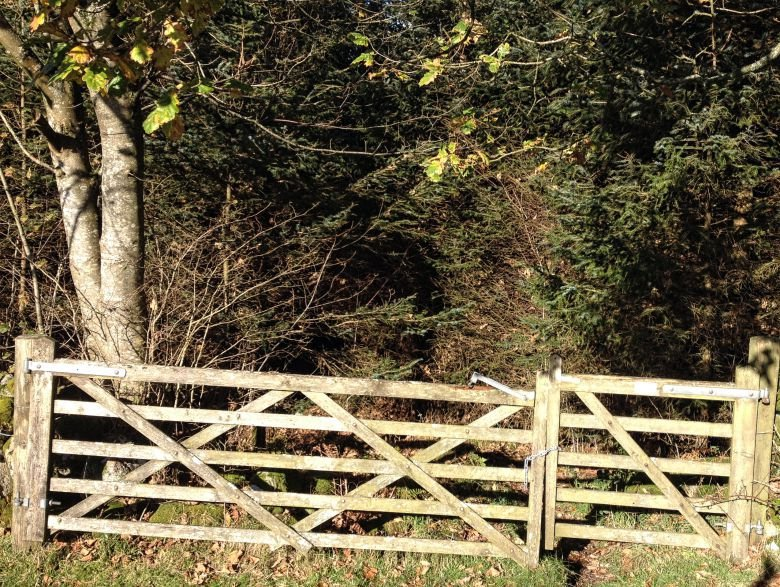 Gate into woodland return from Torr Point