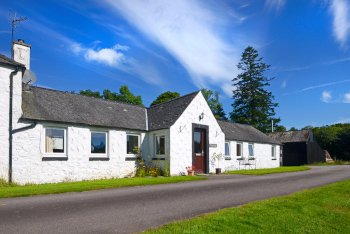 Woodsedge holiday cottage nocturnal wildlife experience dumfries and galloway